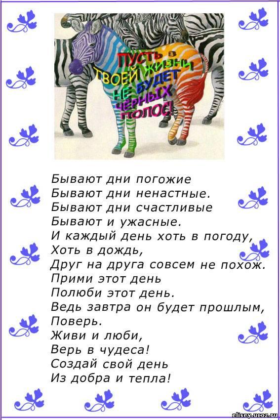 Поздравление зебра и радуга 93